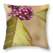 New Berries Throw Pillow