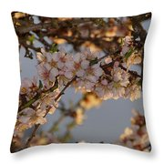 New Blossoms - Old Almond Tree Throw Pillow