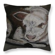 New Born Calf Throw Pillow by Sharon Duguay