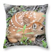 New Born Fawn Throw Pillow