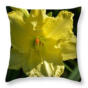 New Born - Lily Throw Pillow
