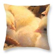 New Chicks Throw Pillow