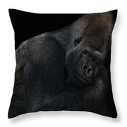 New Chief In Town Throw Pillow