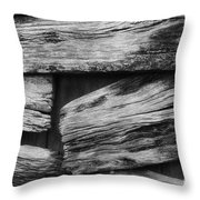 New Direction Throw Pillow