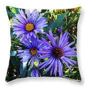 New England Aster Throw Pillow
