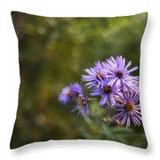 New England Asters Throw Pillow