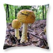 New England Fly Agaric Throw Pillow