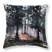 New England Landscape No.214 Throw Pillow