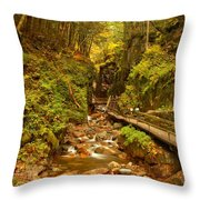New England Waterfall Gorge Throw Pillow