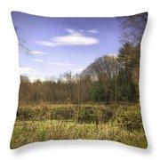 New England Wetland Throw Pillow