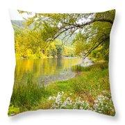 New Englands Early Autumn Throw Pillow