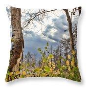 New Generation - Casper Mountain - Casper Wyoming Throw Pillow