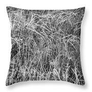 New Grasses Glacier National Park Bw Throw Pillow