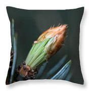 New Growth - Hats Off Throw Pillow
