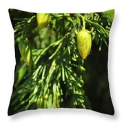 New Growth 25848 Throw Pillow