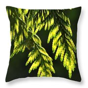 New Growth 25859 Throw Pillow