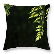 New Growth 25866 Throw Pillow