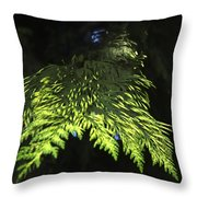 New Growth 25871 2 Throw Pillow