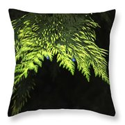 New Growth 25871 Throw Pillow
