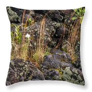 New Growth In A Desolate Area Throw Pillow