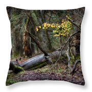 New Growth In An Old Forest Throw Pillow