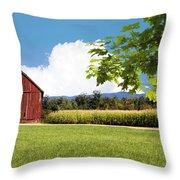 New Hampshire Barnyard Throw Pillow