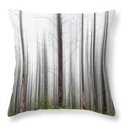 New Jersey Pine Barrens Throw Pillow