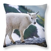 New Life In The High Country Throw Pillow