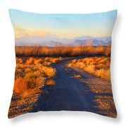 New Mexico Back Country Road Throw Pillow