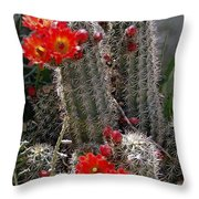 New Mexico Cactus Throw Pillow