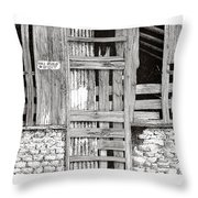 Will Build To Suit New Mexico Doors Throw Pillow