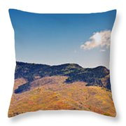 New Mexico Panorama Throw Pillow