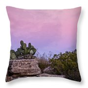 New Mexico Sunset With Cacti Throw Pillow