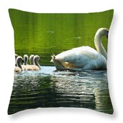 New Mute Swan Family In May Throw Pillow