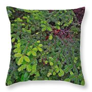 New Needles At Lobster Cove In Rocky Harbour-nl Throw Pillow