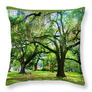 New Orleans City Park - Live Oak Throw Pillow