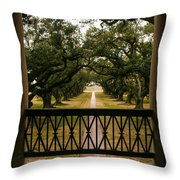 New Orleans Live Oak Throw Pillow