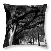 New Orleans Oaks Throw Pillow