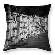 New Orleans St Louis Cemetery No 3 Throw Pillow by Christine Till