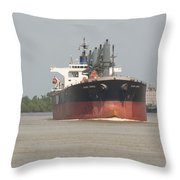 New Orleans Visitior On The Mississippi Throw Pillow