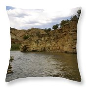 New Photographic Art Print For Sale Banks Of The Rio Grande New Mexico Throw Pillow