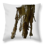 New Photographic Art Print For Sale   Day Of The Dead Skeleton On A Stick Throw Pillow