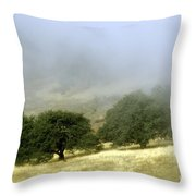 Mist In The Californian Valley Throw Pillow