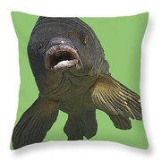 New Photographic Art Print For Sale   Open Mouthed Fish In Green Water Throw Pillow