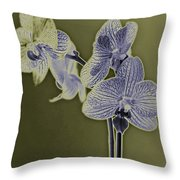 New Photographic Art Print For Sale Orchids 10 Throw Pillow