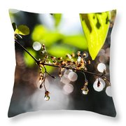 New Rain Throw Pillow