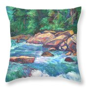New River Fast Water Throw Pillow