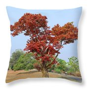 New Spring Leaves On Tree  Throw Pillow