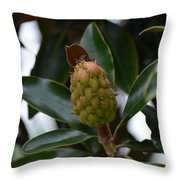 New Start Magnolia Throw Pillow