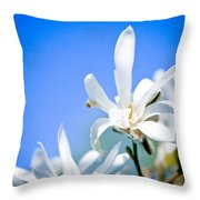 New White Magnolia Blossom Throw Pillow